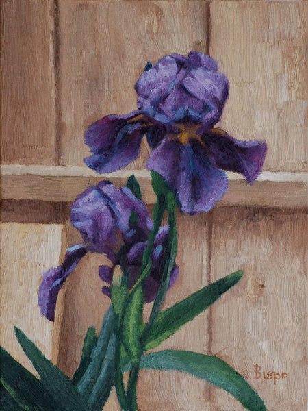 Irises Still Life © Bispo